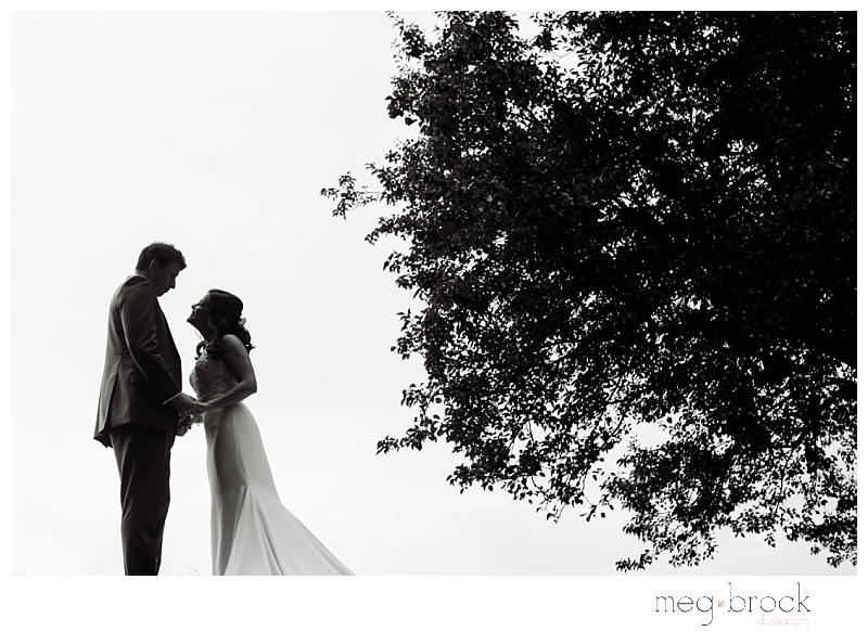 A bride and groom pose for an artistic silhouette portrait during their wedding day at the Manor House at Commonwealth.